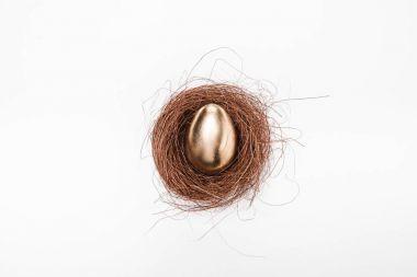 Golden Easter egg in nest