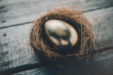Golden Easter egg in nest