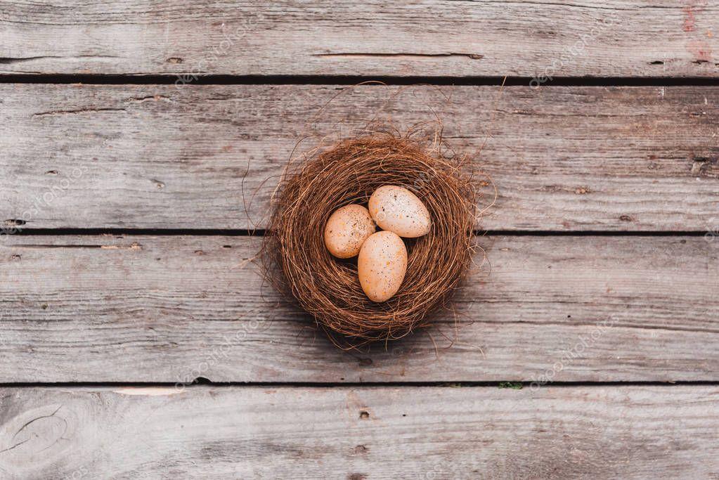 Easter eggs in nest
