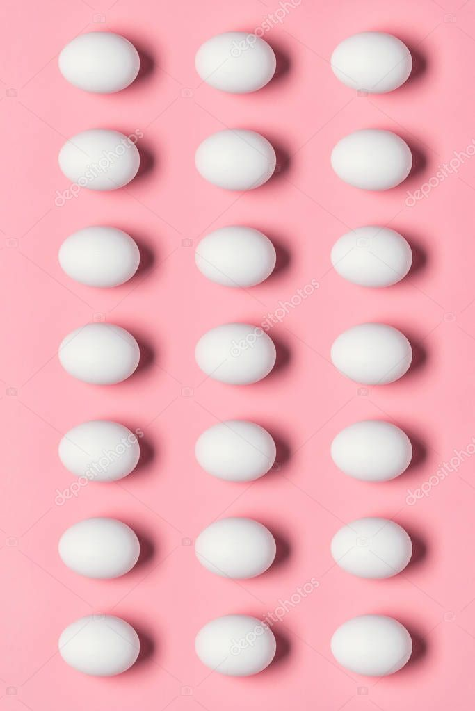 rows of white eggs
