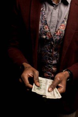 counting dollar banknotes