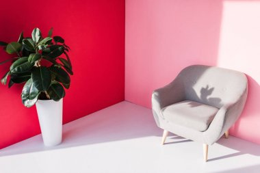 armchair and houseplant