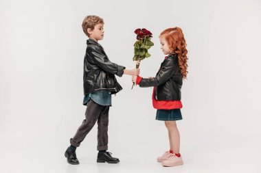 Handsome little boy presenting roses bouquet to his girlfriend isolated on grey stock vector