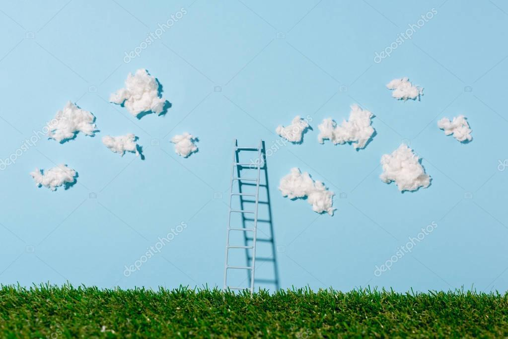 small ladder standing on green grass and blue sky with clouds