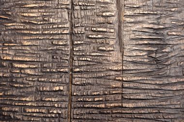 close-up shot of cracked wooden material texture