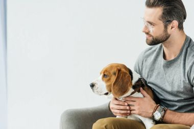 side view of handsome man sitting on armchair with cute beagle