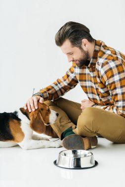 man palming cute beagle near pet bowl