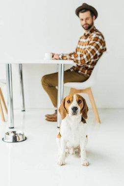 man drinking coffee, dog sitting on floor