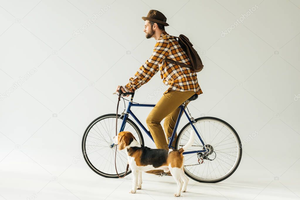 side view of bicycler with dog on white