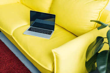 Laptop with blank screen on yellow couch with potted plant beside