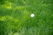 Fotografie close up view of white golf ball on green lawn