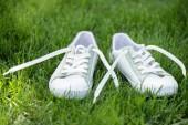 Fotografia Chiuda sulla vista di scarpe alla moda bianche su erba verde