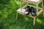 Fotografie close up view of black leather shoes on wooden stairs on green grass