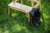 Fotografie zblízka pohled černé kožené boty a pampeliška na dřevěných schodech na zelené trávě