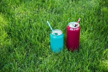 close up view of drinks in cans with straws on green grass
