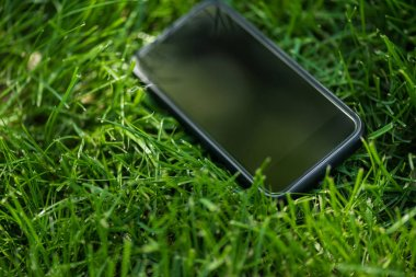 close up view of smartphone with blank screen on green lawn