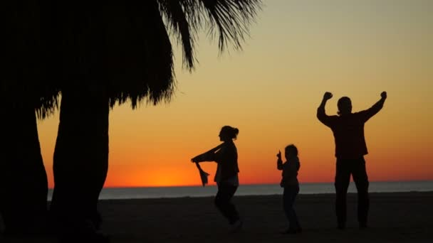 Tropical sunset with palm trees silhouette at ocean beach, woman, man and child walking along the shore. Family holiday