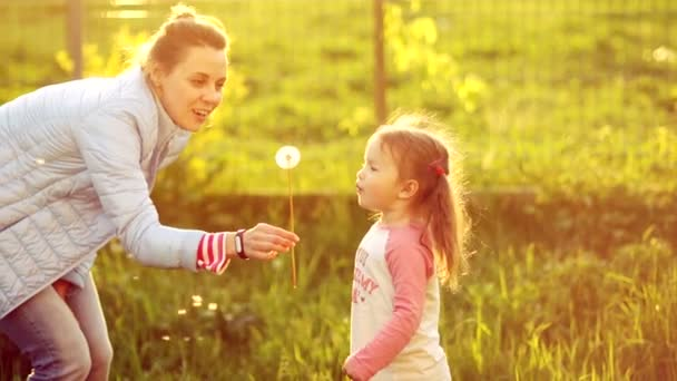 Mom and daughter blowing on a dandelion. Wearing a spring in the park. Bright sunset sun. Childrens Day. Mothers Day