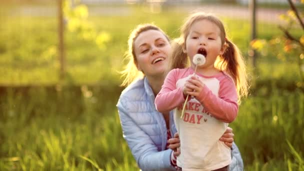 Sladká holčička s dvěma ocásky na hlavě, spolu s její matkou, je záměrně fouká pampeliška. Dcera a matka odpočívá v spring glade. Šťastná rodina, paprsky zapadajícího slunce
