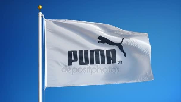 bandera puma