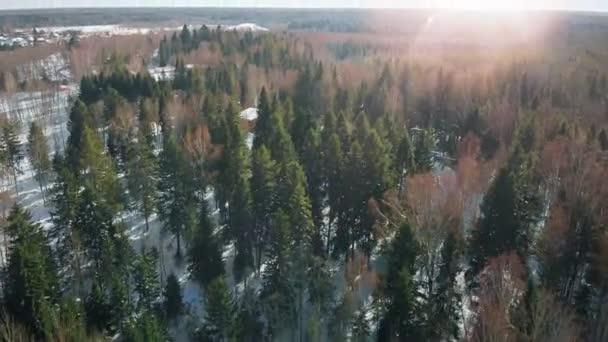 Hladké vzdušné střílení sněhu bez lidí. Zimní les z dronu za slunečného studeného počasí. Čistá příroda s čerstvým vzduchem. Rozmíchaná střela z míchané vrcholky stromů.