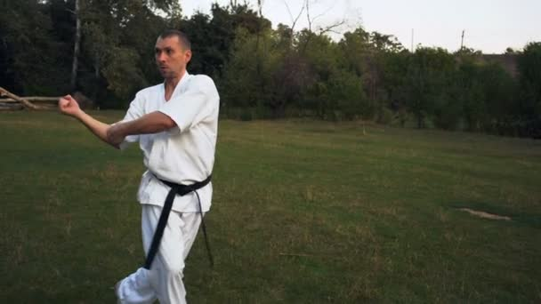 The guy in White Kimono Intensively Engages Karate Early In the morning in City Park