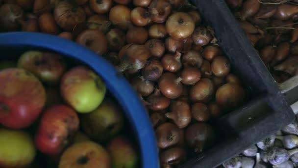 Közeli, gyümölcsök és zöldségek rejlik Műanyag dobozok