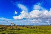 Fényképek Digger mezőben kék ég alatt