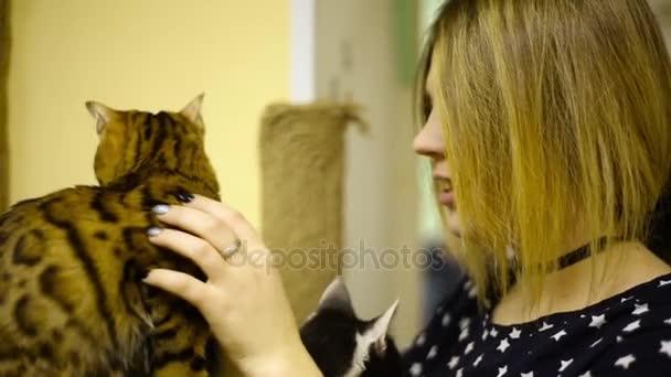 Asijské žena dívka hladila dotýká kočky