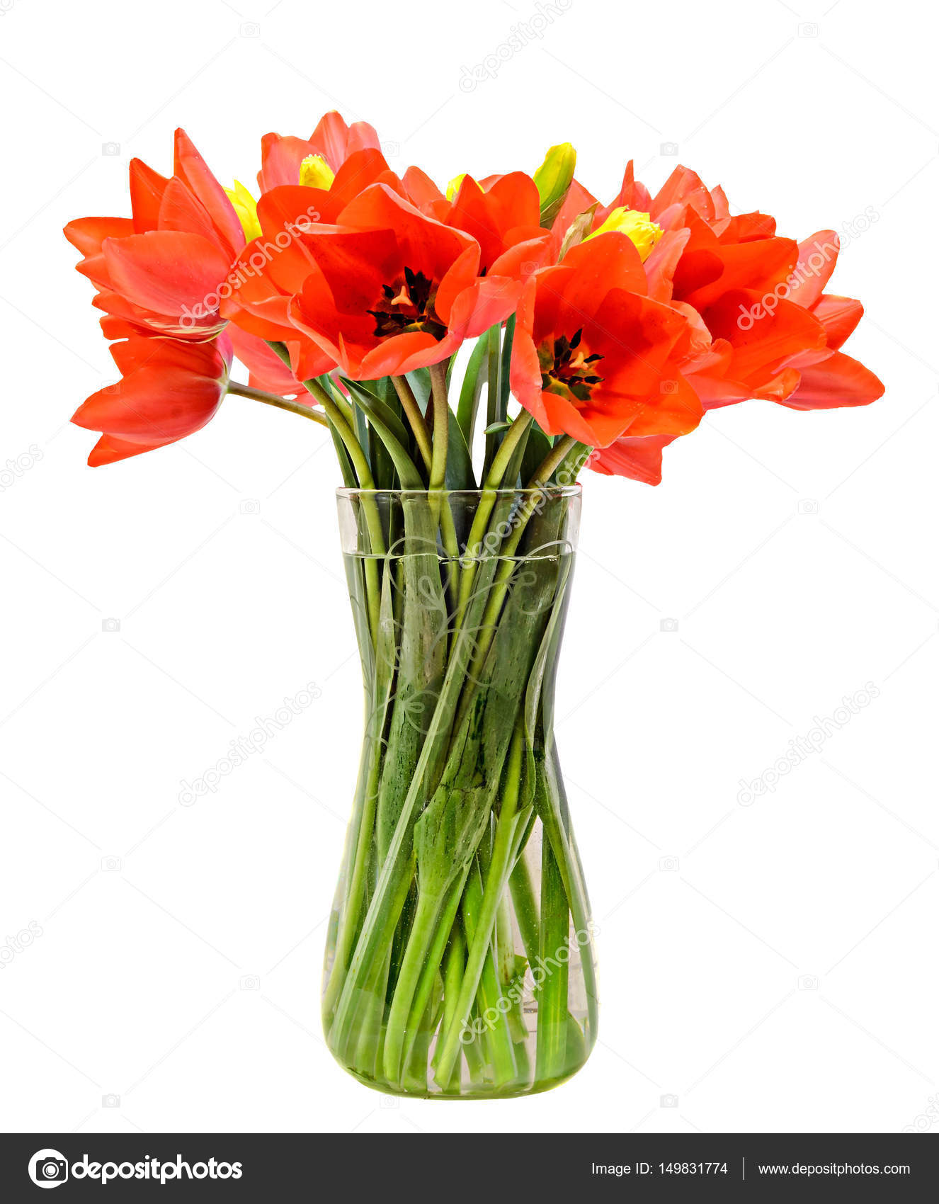 del file heathers arrangement marina tulips arranged ca flowers in rey vase