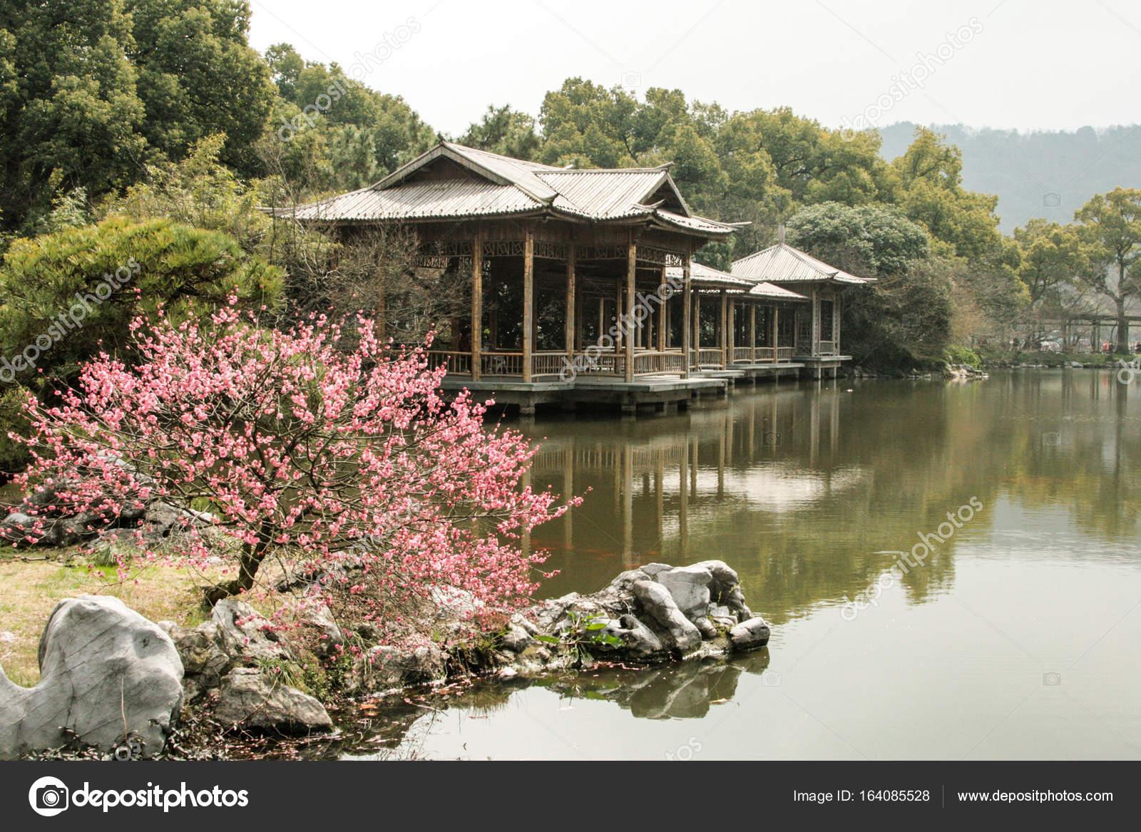 Jardines chinos Foto de stock Linusek 164085528