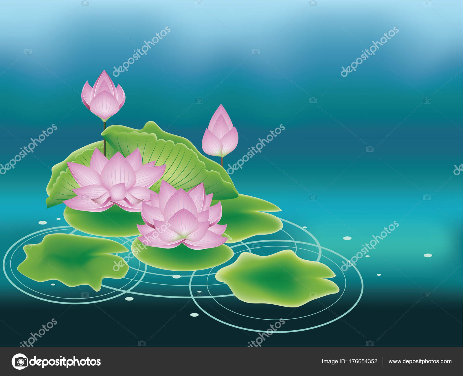 Lotus Flower With Leaves Stock Vector Artshock 176654352