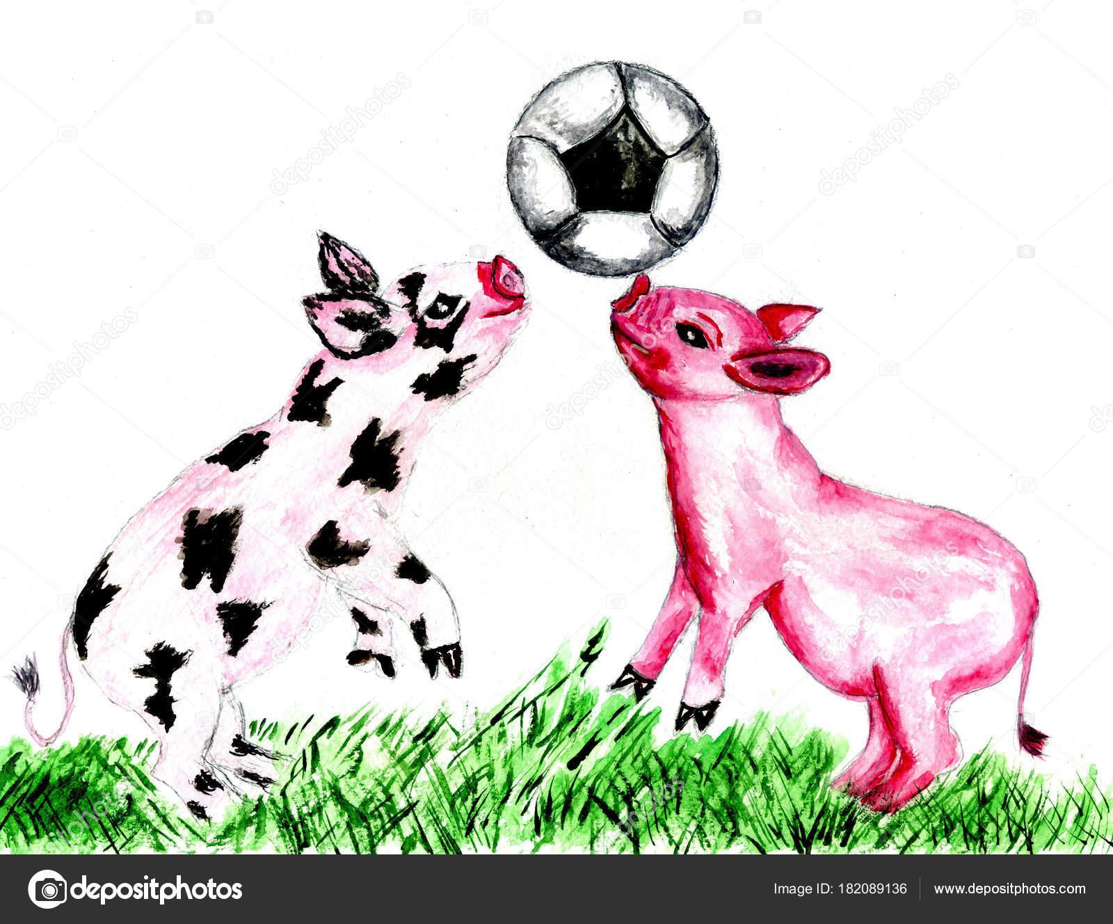 Ilustración Dibujos Animados Lindo Cerdo Pintado Acuarelas Fotos