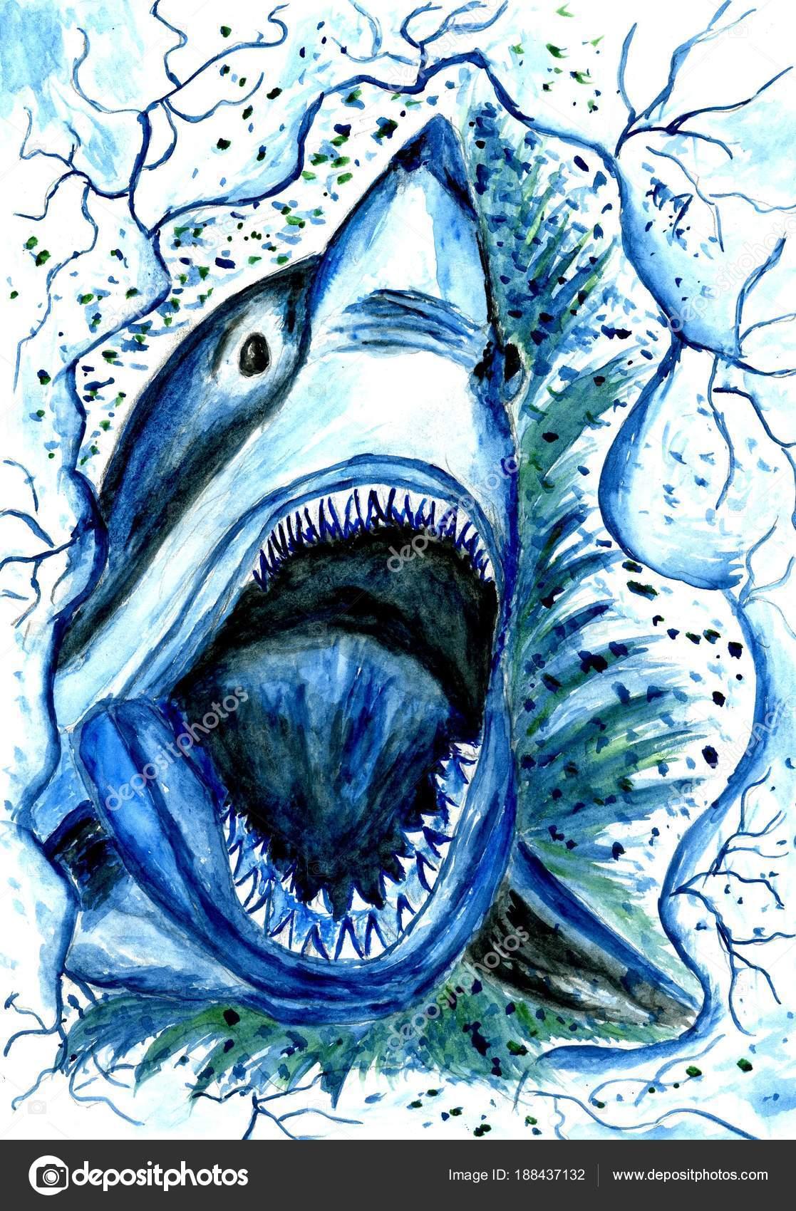 Dessin requin affam photographie artshock 188437132 - Modele dessin requin ...