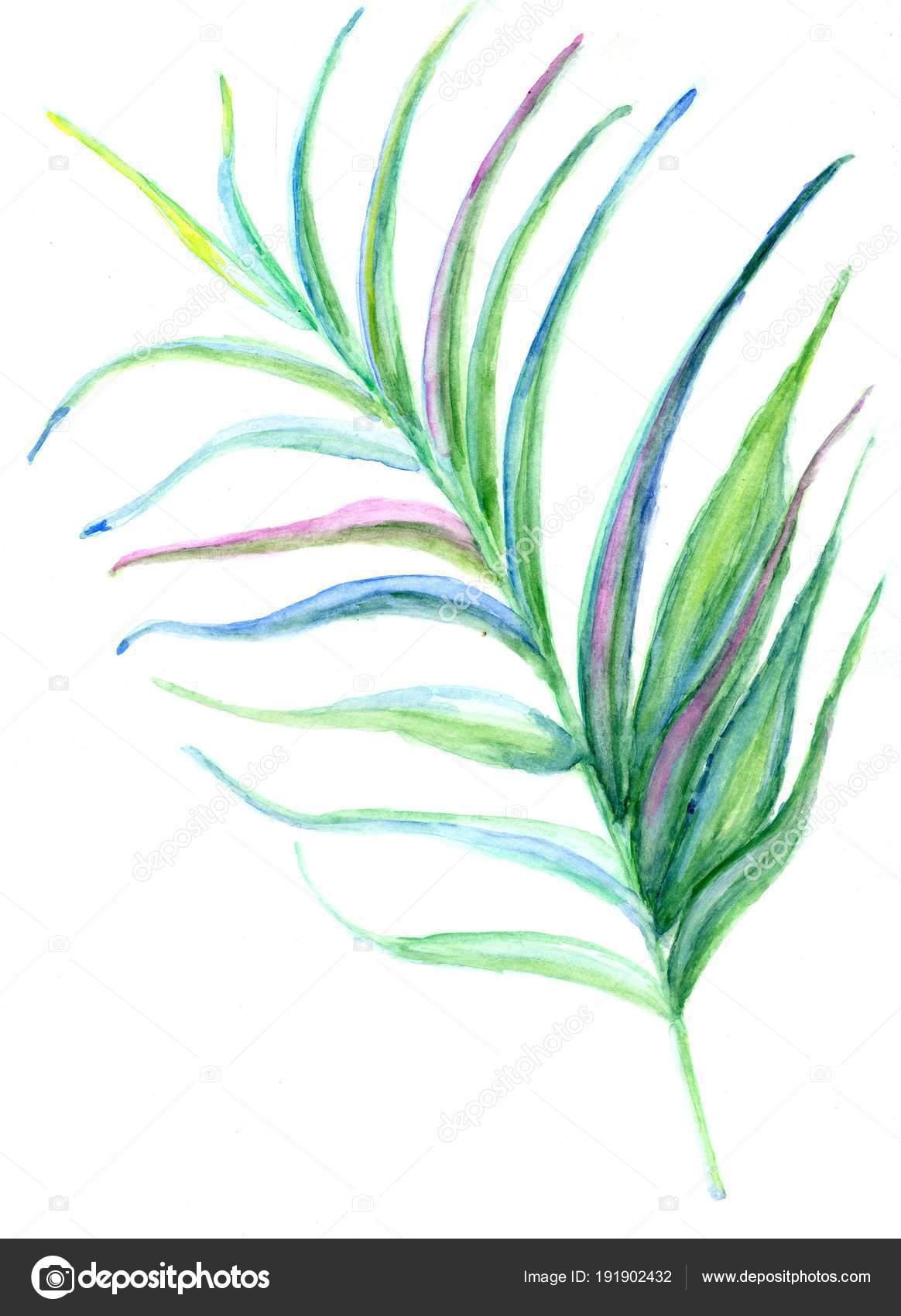 tropical leaves art stock photo artshock 191902432