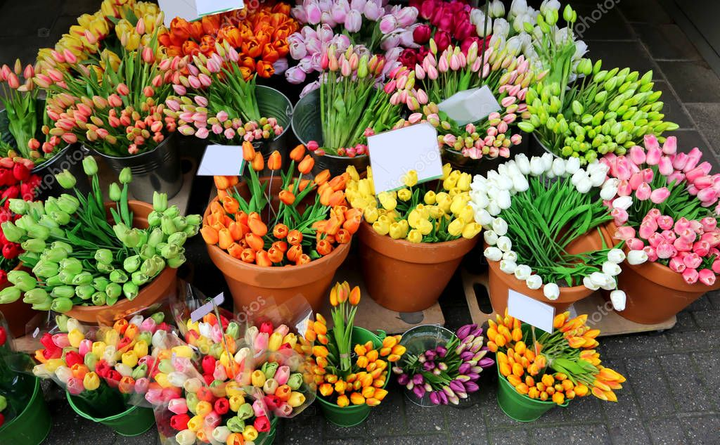 bouquets of tulips on sale from the florist to the flower market