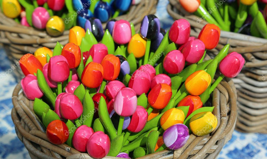 tulips for sale in the flower market