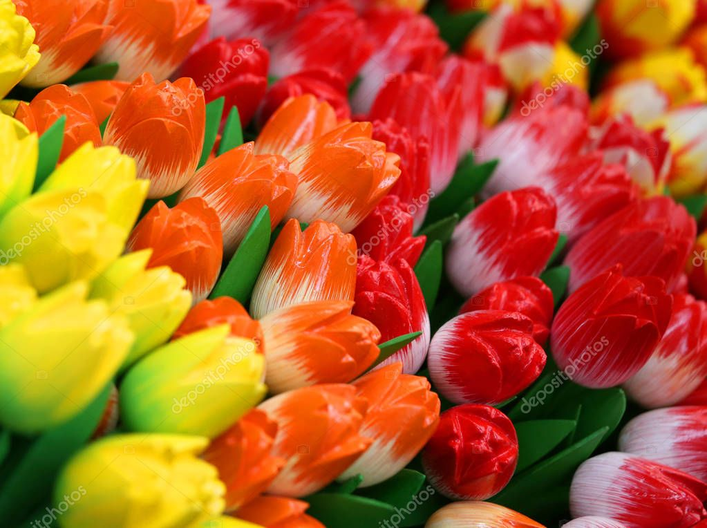 background of colorful tulips for sale