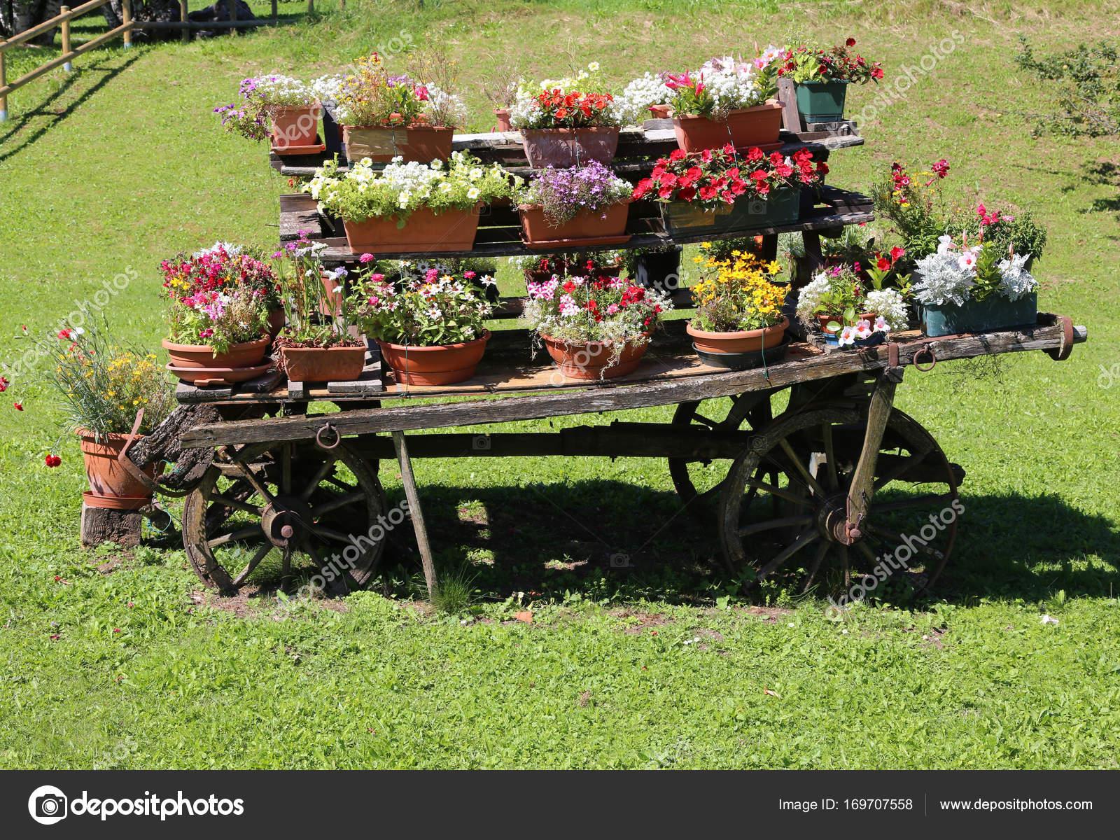 Decorazione Vasi Da Giardino : Carro in legno con vasi di fiori per decorare il giardino u foto