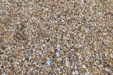 many pebbles on the beach