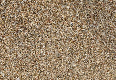 thousands of tiny pebbles smoothed by the waves of the sea on the beach