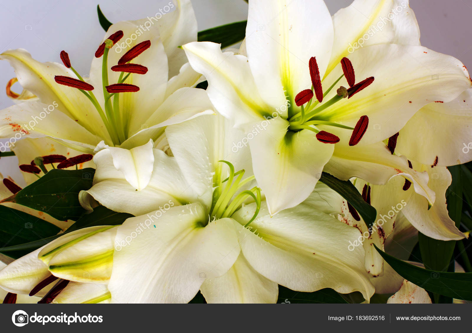 Flowers lilies adorned with stones and different decorations flowers lilies adorned with stones and different decorations stock photo izmirmasajfo Image collections