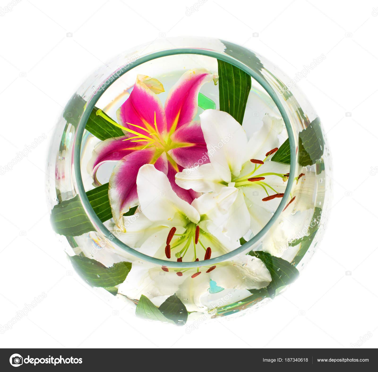 Afbeeldingen Grote Bloemen
