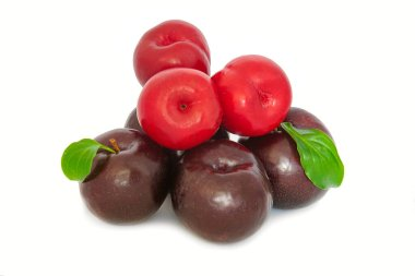 plums on a big background, isolate. bright plums black or red without background.