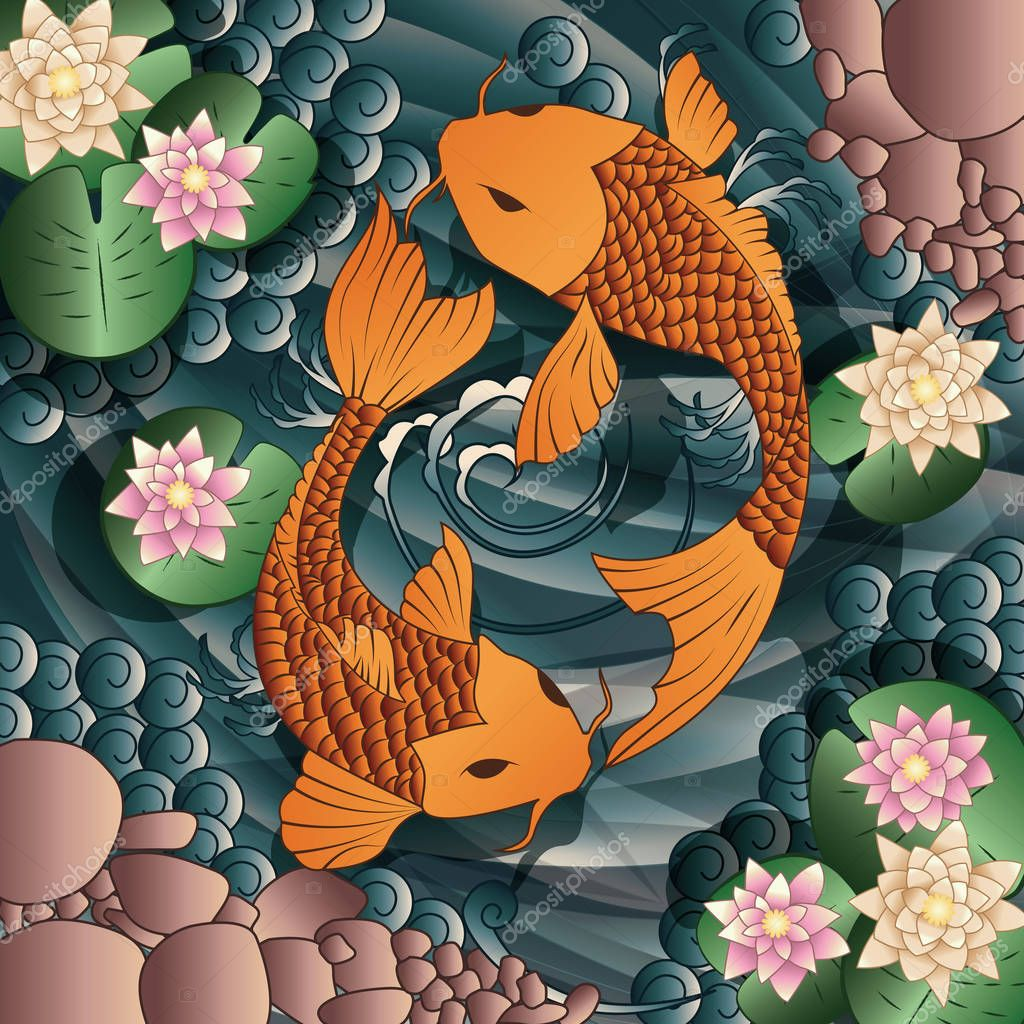 Carp Koi fish swimming in a pond with water lilies