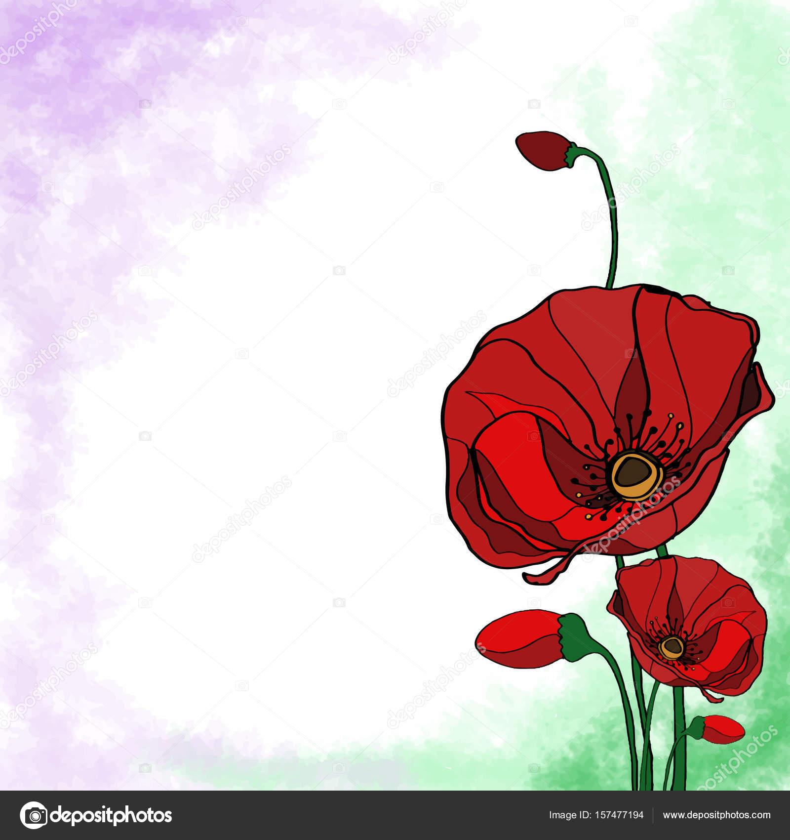 Marco de flor amapola flores — Foto de stock © designartks #157477194