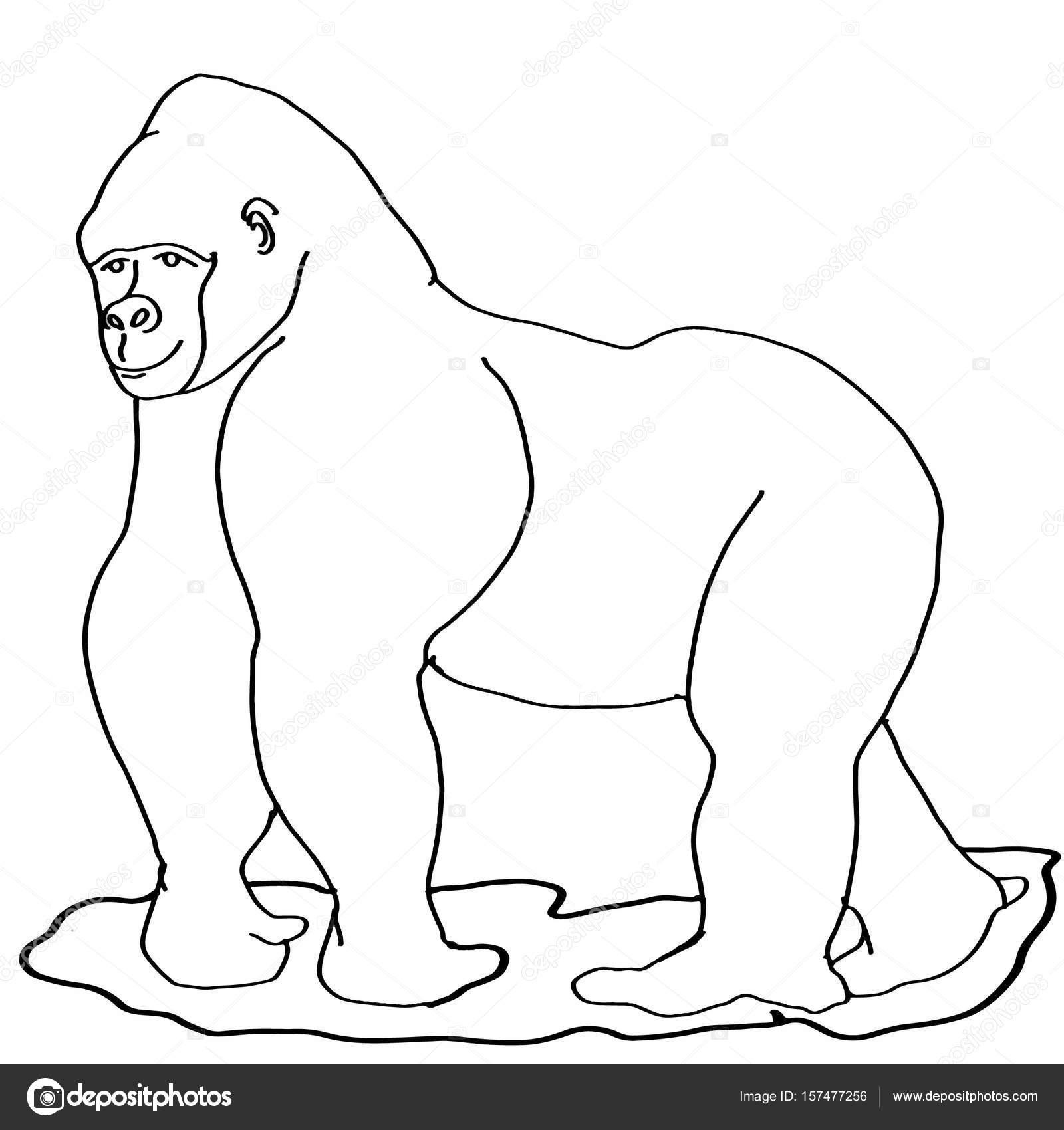 Goril Simgesini Boyama Hayvan Stok Foto Designartks 157477256