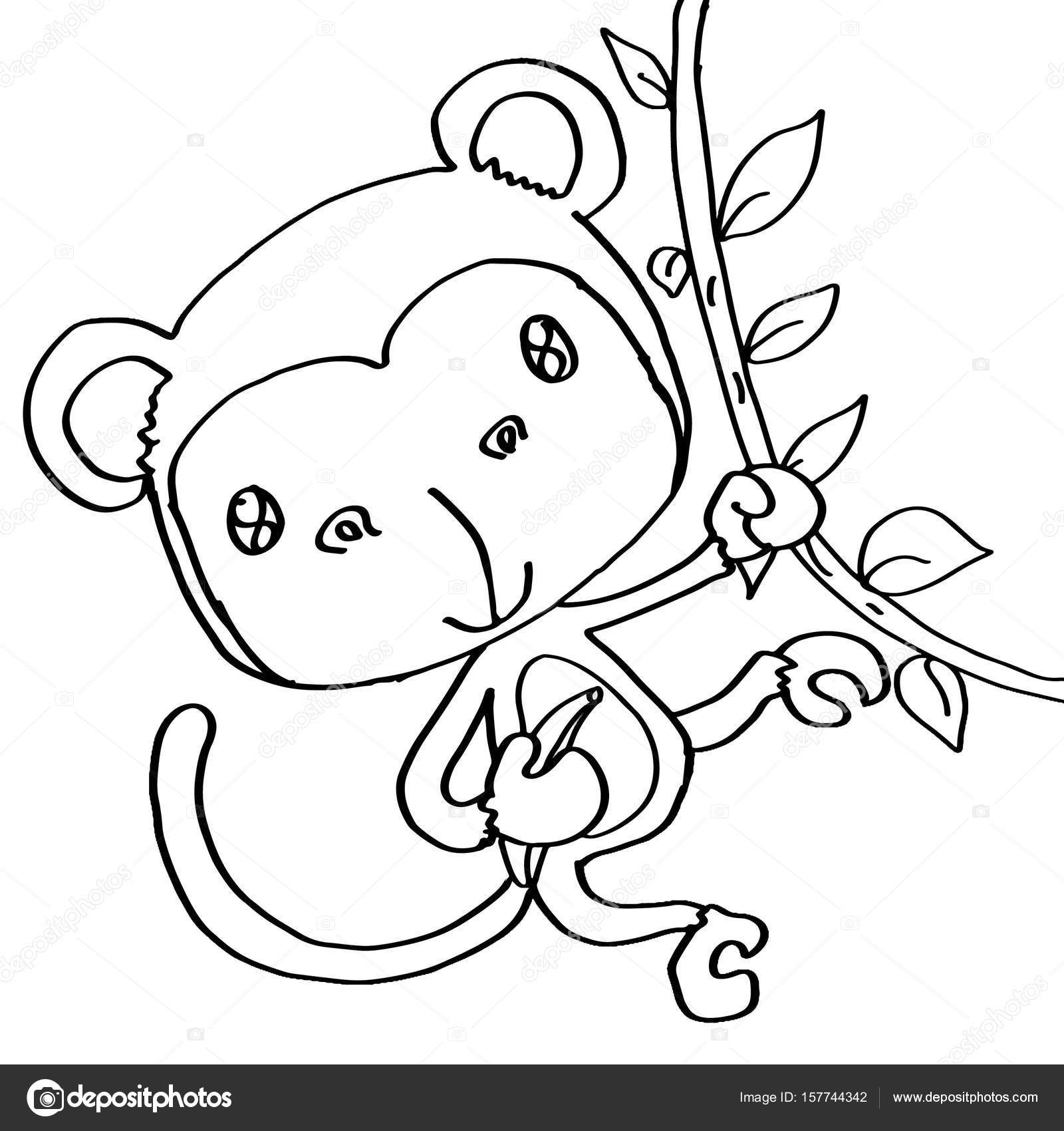 Brown Monkey Coloring Stock Photo C Designartks 157744342