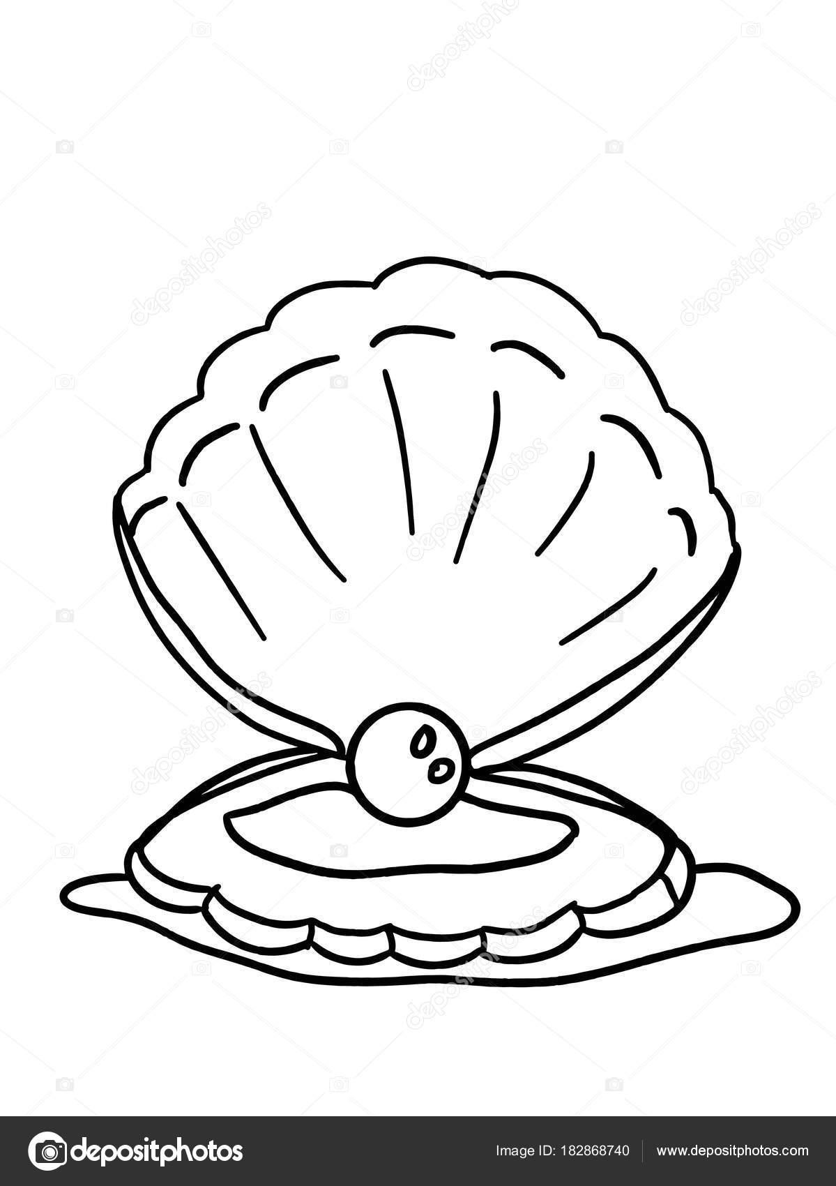 Perle Der Muscheln Cartoon Färbung — Stockfoto © designartks #182868740