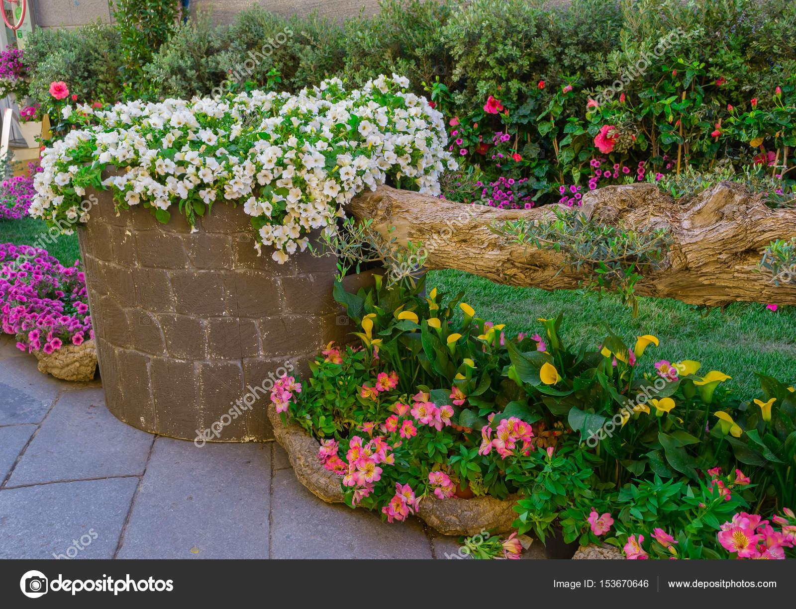Gärten In Der Stadt Stockfoto Fenomeno79 153670646